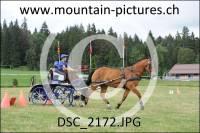 DSC_2172