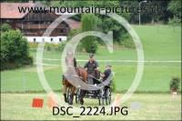 DSC_2224