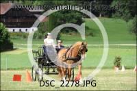 DSC_2278