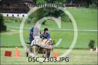 DSC_2303