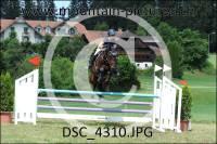 DSC_4310