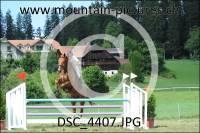 DSC_4407