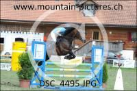 DSC_4495