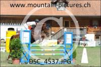 DSC_4537